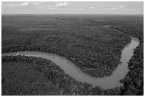 Aerial view of Congaree River bend. Congaree National Park ( black and white)
