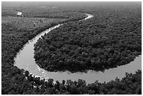 Aerial view of meanders of Congaree River. Congaree National Park ( black and white)