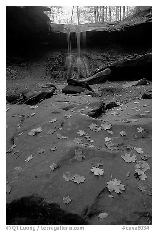 Fallen leaves on green slabs and Blue Hen Falls. Cuyahoga Valley National Park (black and white)