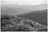 Pictures of Great Smoky Mountains NP