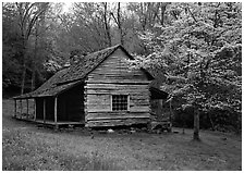 Noah Ogle log cabin in the spring, Tennessee. Great Smoky Mountains National Park, USA. (black and white)
