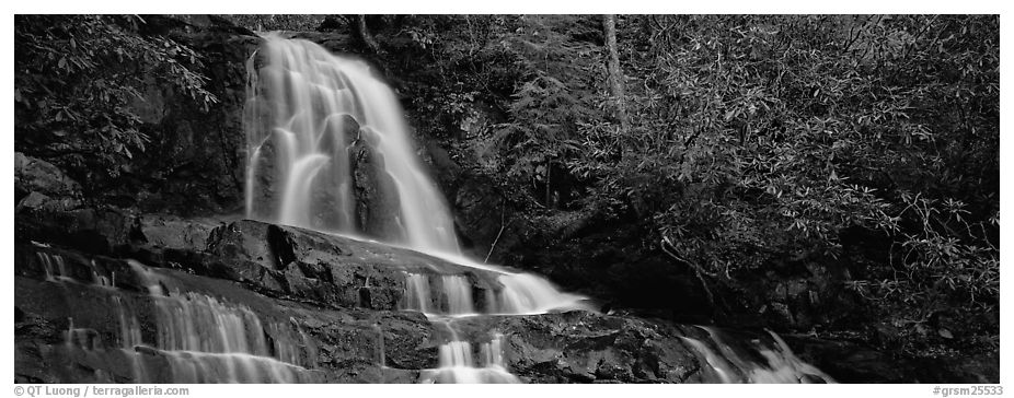 Waterfall in decidous forest. Great Smoky Mountains National Park (black and white)