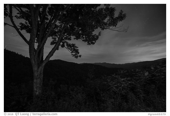 View from Cataloochee Overlook at night, North Carolina. Great Smoky Mountains National Park (black and white)