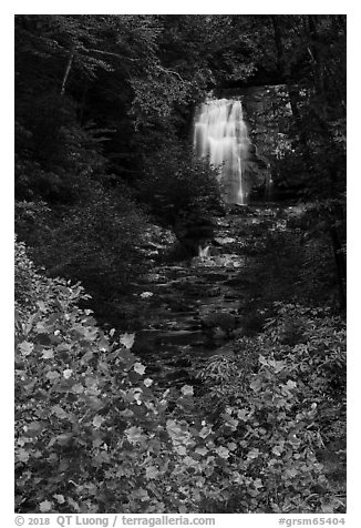 Meigs Falls, Tennessee. Great Smoky Mountains National Park (black and white)