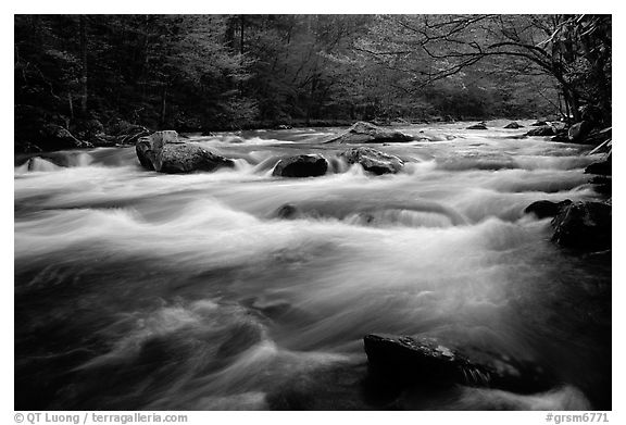 Little River flow, Tennessee. Great Smoky Mountains National Park (black and white)