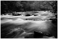 Little River flow, Tennessee. Great Smoky Mountains National Park, USA. (black and white)