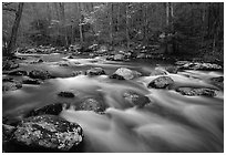 Water flowing over boulders in the spring, Treemont, Tennessee. Great Smoky Mountains National Park, USA. (black and white)