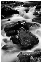 Stream flowing over mossy boulders, Roaring Fork, Tennessee. Great Smoky Mountains National Park, USA. (black and white)
