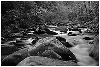 River cascading along mossy boulders, Roaring Fork, Tennessee. Great Smoky Mountains National Park, USA. (black and white)