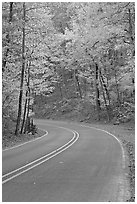 Road curve and fall colors on West Mountain. Hot Springs National Park ( black and white)