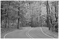 Windy road and fall colors on West Mountain. Hot Springs National Park ( black and white)