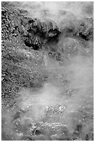 Steam rising from hot water cascade. Hot Springs National Park ( black and white)