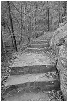 Stone steps on trail in forest with fall foliage, Gulpha Gorge. Hot Springs National Park ( black and white)