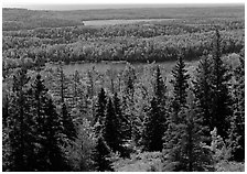 Lakes and forest. Isle Royale National Park, Michigan, USA. (black and white)