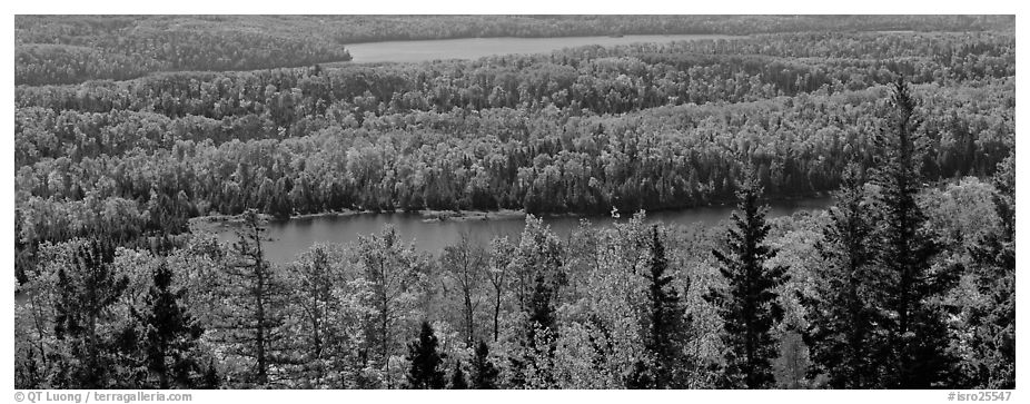 Lakes and forest in autumn. Isle Royale National Park (black and white)