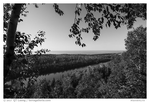 View from Louise Lookout framed by trees. Isle Royale National Park (black and white)