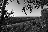 View from Louise Lookout framed by trees. Isle Royale National Park ( black and white)
