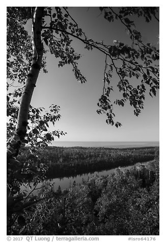 View from Louise Lookout in the summer. Isle Royale National Park (black and white)