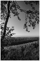 View from Louise Lookout in the summer. Isle Royale National Park ( black and white)