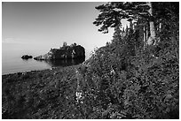 Wildflowers, offshore islet, and Lake Superior, Mott Island. Isle Royale National Park ( black and white)