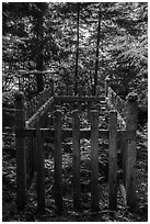Grave, Bangsund Cabin site. Isle Royale National Park ( black and white)