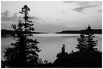 Trees and calm waters, Moskey Basin, dawn. Isle Royale National Park ( black and white)