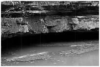 Styx resurgence and limestone ledges. Mammoth Cave National Park ( black and white)