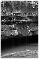 Water drips over limestone ledges and Styx. Mammoth Cave National Park ( black and white)