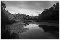Sloans Crossing Pond. Mammoth Cave National Park ( black and white)