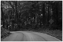Houchin Ferry Road. Mammoth Cave National Park ( black and white)