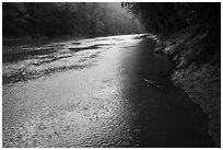 Rain, Green River. Mammoth Cave National Park ( black and white)