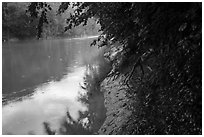 Green River in the rain at Dennison Ferry. Mammoth Cave National Park ( black and white)