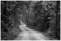 Dennison Ferry Road. Mammoth Cave National Park ( black and white)