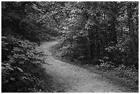 River Styx Trail in summer. Mammoth Cave National Park ( black and white)