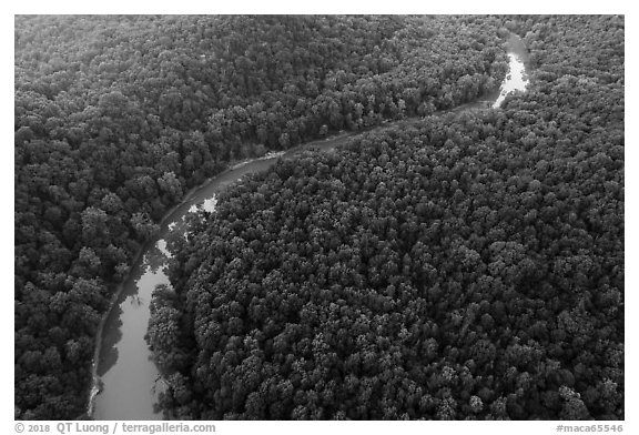 Aerial view of Green River curve. Mammoth Cave National Park (black and white)
