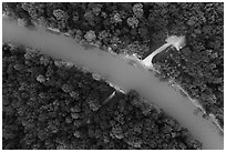 Aerial view of Green River and Houchin Ferry looking down. Mammoth Cave National Park ( black and white)