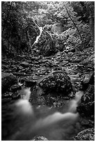 Falls of the Rose river. Shenandoah National Park, Virginia, USA. (black and white)