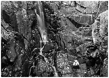 Stream cascading over dark rock in autumn. Shenandoah National Park ( black and white)