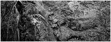 Rocky outcrop in fall forest with cascading water. Shenandoah National Park (Panoramic black and white)