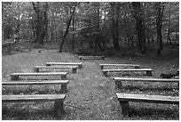 Amphitheater, Matthews Arm Campground. Shenandoah National Park ( black and white)