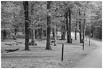 Matthews Arm Campground. Shenandoah National Park ( black and white)