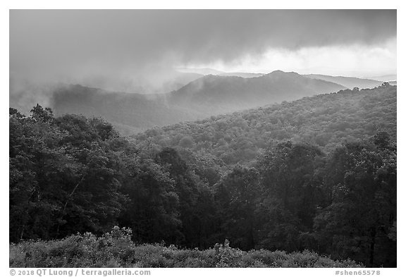 Forested ridges and approaching storm, Thornton Hollow Overlook. Shenandoah National Park (black and white)