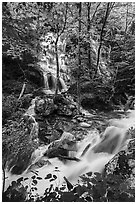 Waterfalls and stream, Whiteoak Canyon. Shenandoah National Park ( black and white)