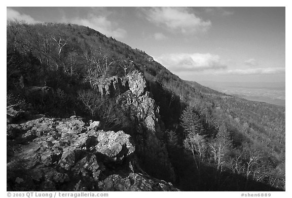 Rocky outcrop, Little Stony Man, early morning. Shenandoah National Park (black and white)