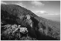Rocky outcrop, Little Stony Man, early morning. Shenandoah National Park ( black and white)