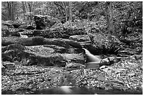 Hogcamp Branch of the Rose River. Shenandoah National Park ( black and white)