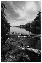 Beast Lake. Voyageurs National Park ( black and white)