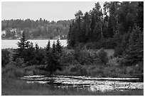 Pond and Peary Lake. Voyageurs National Park ( black and white)