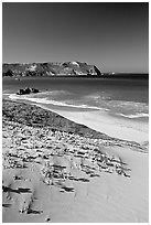 Sand dunes and Cuyler Harbor, afternoon, San Miguel Island. Channel Islands National Park, California, USA. (black and white)