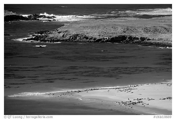 Point Bennet and rookeries, mid-day, San Miguel Island. Channel Islands National Park (black and white)